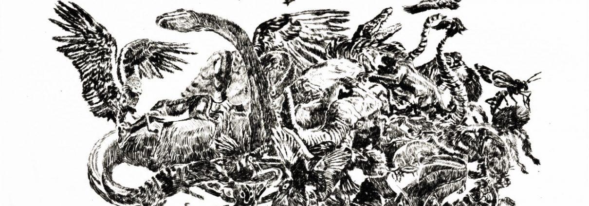 elena-fernandez-prada-la-caza-noticias-mambo-gallery