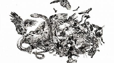 la-caza-1-elena-fernandez-prada-mambo-gallery